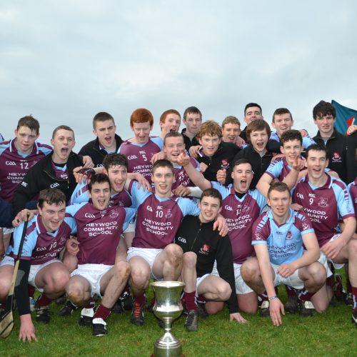 Team Leinster Final 2013